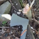 Топор Gerber Bear Grylls Survival Hatchet
